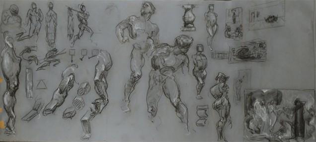 george bridgman constructive anatomy