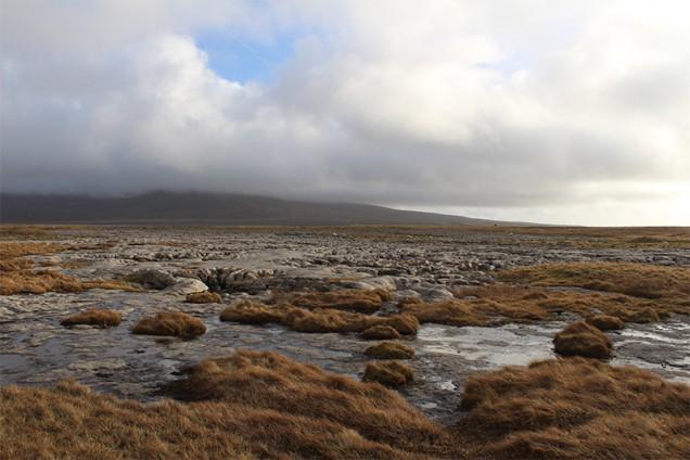 140211-ac-allen-c-The-local-landscape-(11)-p