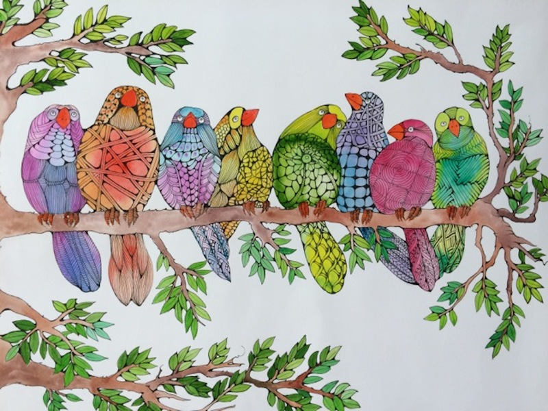 birds on branch; animal painting