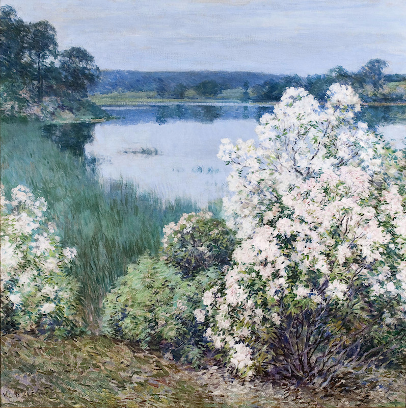 Willard Leroy Metcalf > Kalmia > 1905 > 20th Century > 34 in. x 34 in. > Florence Griswold Musuem; Museum Purchase through The Nancy B. Krieble Acquisition Fund, with the support of Geddes and Kathy Parsons; The Dorothy Clark Archibald Acquisition Fund; Helen E. Krieble; V. J. Dowling; Max and Sally Belding; Richard and Barbara Booth; Mr. and Mrs. David W. Dangremond; Charles and Irene Hamm; William E. Phillips and Barbara Smith; Andy Baxter; Charles T. Clark; Jonathan L. Cohen; Jim and Hedy Korst; Mr. and Mrs. S. Van Vliet Lyman; Clement C. and Elizabeth Moore; Robert and Betsey Webster; Renée Wilson; Peter and Karen Cummins, and a small group of members >