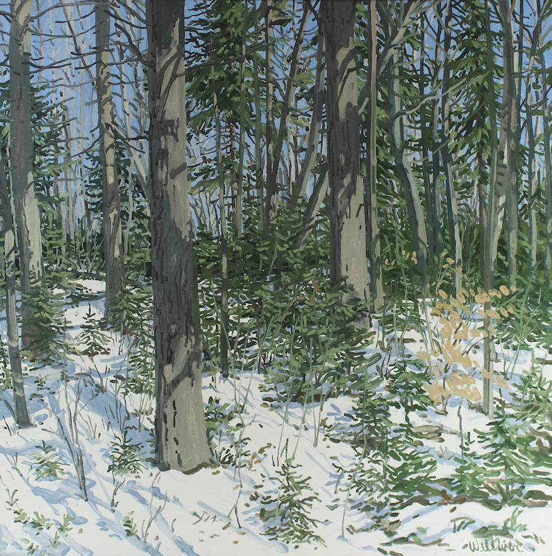 Neil Welliver, Study for Little Spruce, 1985. Oil on canvas, 24 x 24 in. ©Neil Welliver, courtesy Alexandre Gallery, New York.