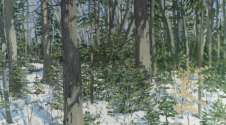 Neil Welliver Oil Studies