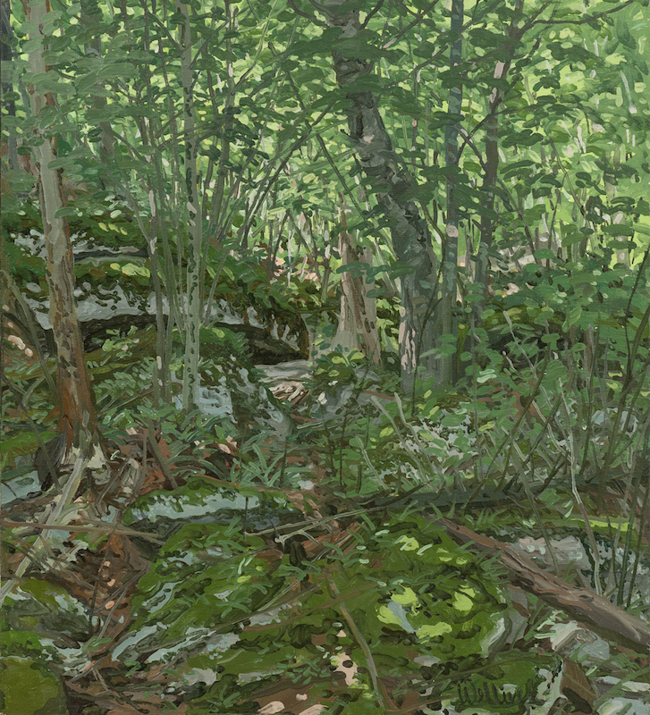 Neil Welliver, Study for Prospect, 1976. Oil on canvas, 20 x 18 in. ©Neil Welliver, courtesy Alexandre Gallery, New York.