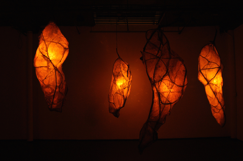 Natalie Tyler, Diapause, 2010. Interactive installation, mixed media, 156 x 240 x 260 in.
