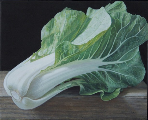 Chinese Cabbage, 8_X10_ 2014