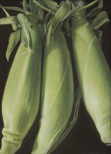Corn, 8_X11_, 2014