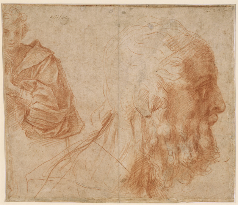 Andrea del Sarto (Italian, 1486 - 1530) Study of the Head of an Old Man in Profile, about 1520 Red chalk 23.9 x 27.7 cm (9 7/16 x 10 7/8 in.) Owner: Kupferstichkabinett, Staatliche Museen zu Berlin - Preußischer Kulturbesitz, KdZ 12924 Photo credit: bpk, Berlin / Kupferstichkabinett, Staatliche Museen, Berlin, Germany / Photo: Volker-H. Schneider / Art Resource, NY