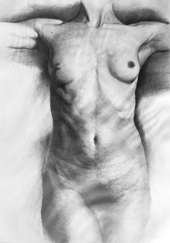 Sherry Camhy, Torso Series, Youth, 2015. Graphite, 40 x 30 in.