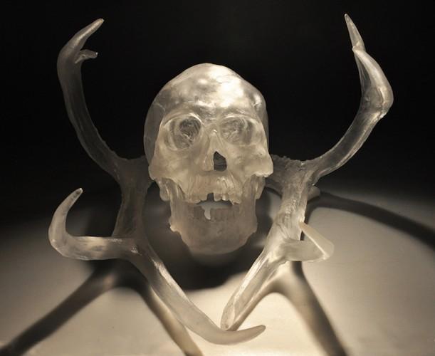 Crystal-Skull-and-Antlers-Natalie-Tyler