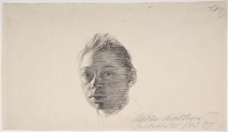 Back to the Drawing Board Käthe Kollwitz, Self-Portrait, turned slightly to the left, ca. 1893. Pen and different shades of gray-black ink, 6 9/16 x 11 7/16 in. The Elisha Whittelsey Collection, The Elisha Whittelsey Fund, 2006. The Metropolitan Museum of Art.