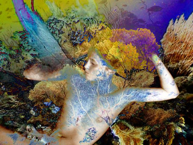 Sylvie Covey Alexander/Heath Contemporary
