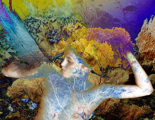 Sylvie Covey at Alexander/Heath Contemporary