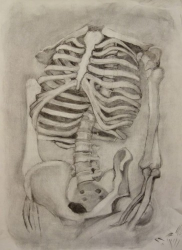 Drawing by Kate Weber