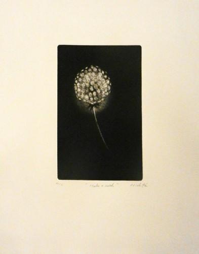 51. Michiko Yoshida, etching aquatint
