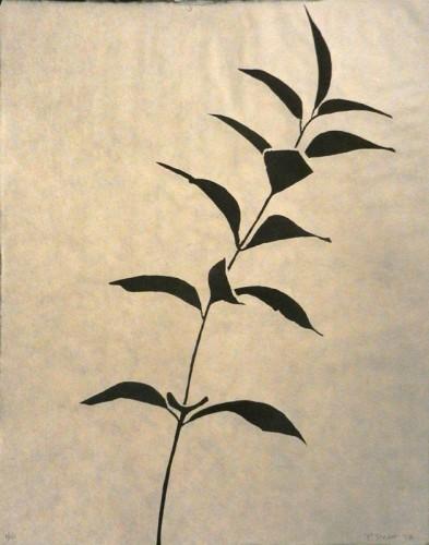 6. Patricia Brett, stone lithograph