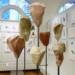 Sculpture by Monika Camillucci thumbnail