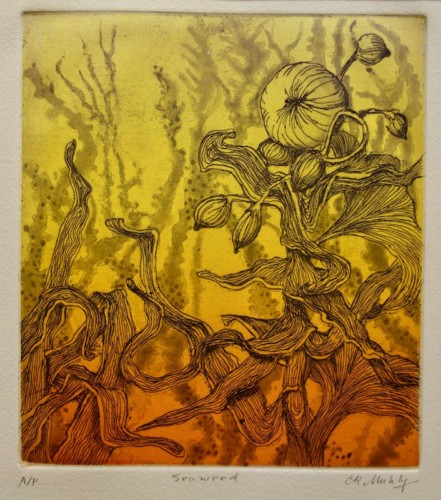 Etching by Catherine Muhly