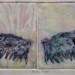 Etching on marble paper by Natsuko Matsumura thumbnail