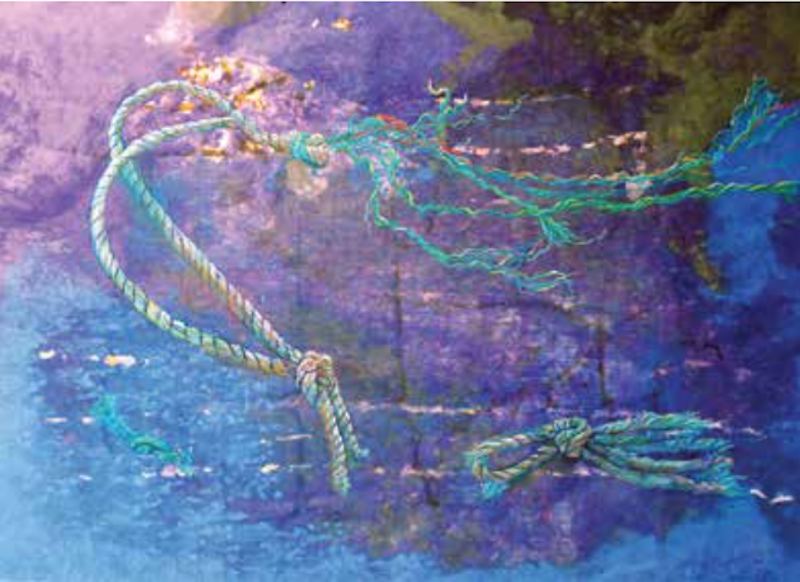 Wendy Shalen, Washed Ashore IV, 2012. Pastel on handmade paper, 30 x 40 in.